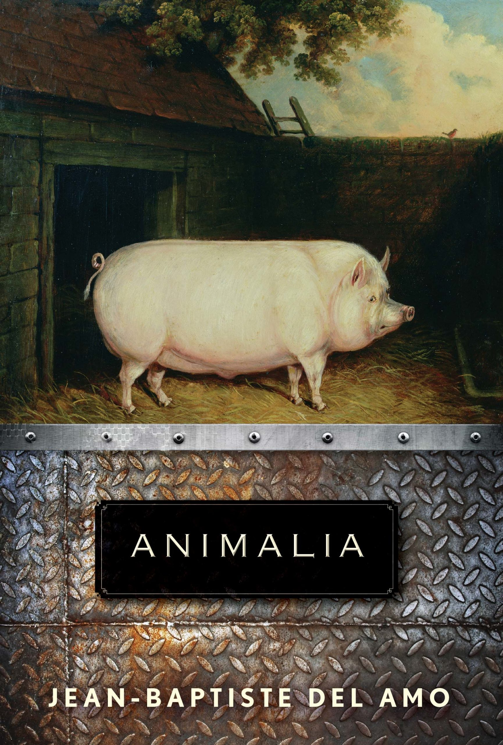 Cover of Animalia, with painting of a pig.